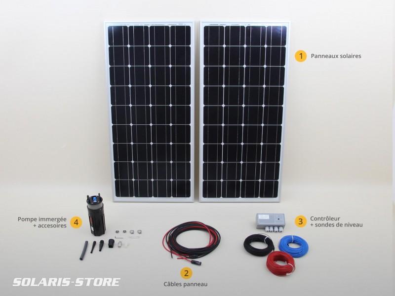 kit solaire de pompage immerg shurflo 70 m 200w 24v solaris store. Black Bedroom Furniture Sets. Home Design Ideas