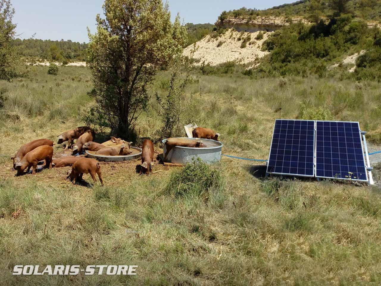 Hérault (34) / Kit solaire avec pompe à eau pour abreuvoir indépendant du réseau