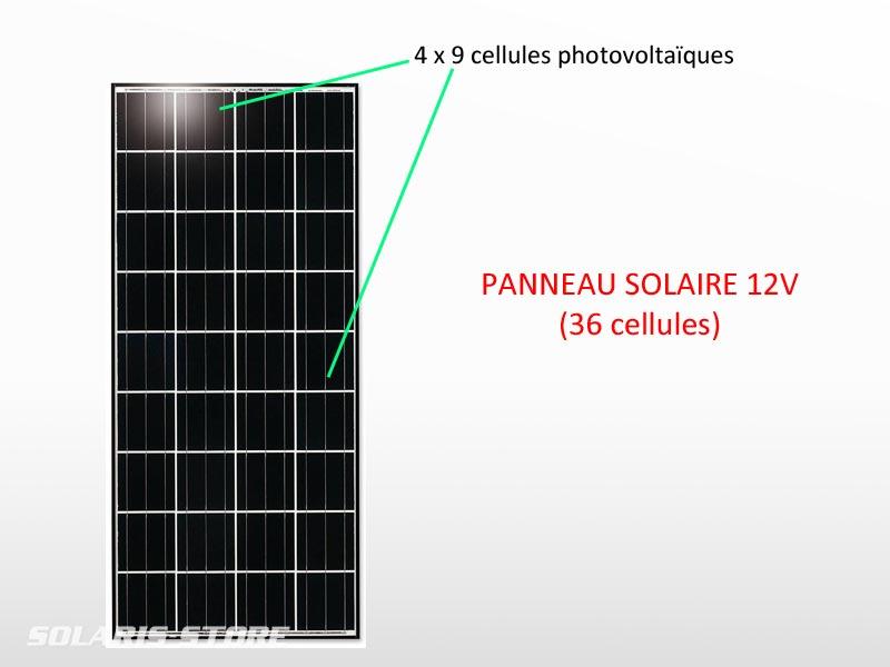 Panneau solaire 12V (36 cellules)